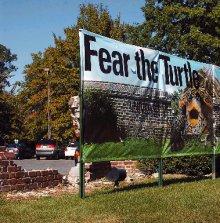 fear the turtle.jpg